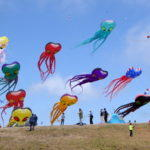 People, kites, smiles
