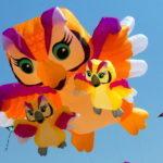 Happy Kite Fest