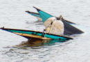 That Kite-Eating Cove
