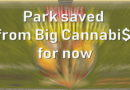 Park saved from Big Cannabi$… for now
