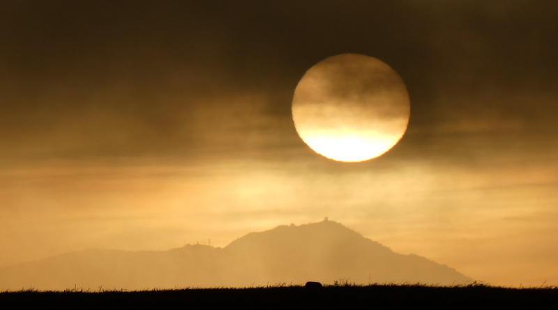 Sun, Fog