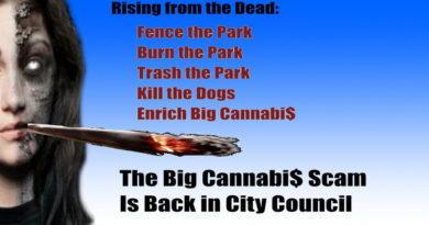 The Cannabi$ Scam Again