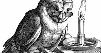 Burrowing Owl Lit Roundup
