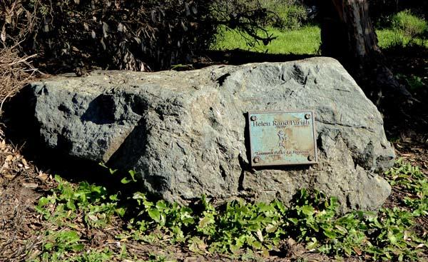 Helen Parish's memorial plaque is unique; it is not on a bench, but on a stone.
