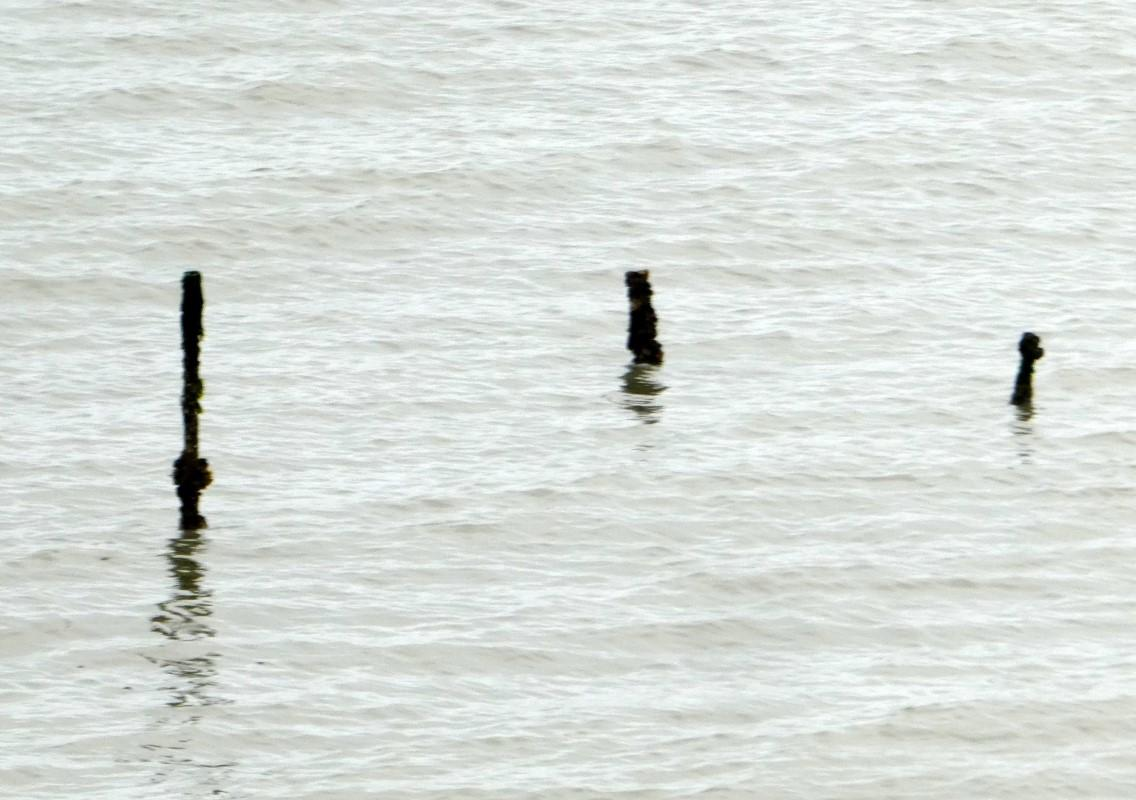Unknown submerged objects on north side