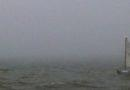 View of the Bay in Typical August Fog (8/24/11)