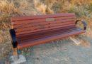 New Bench: Muriel Seligman