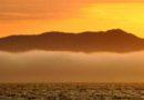 Mt. Tamalpais Over Fog 7/1/2013